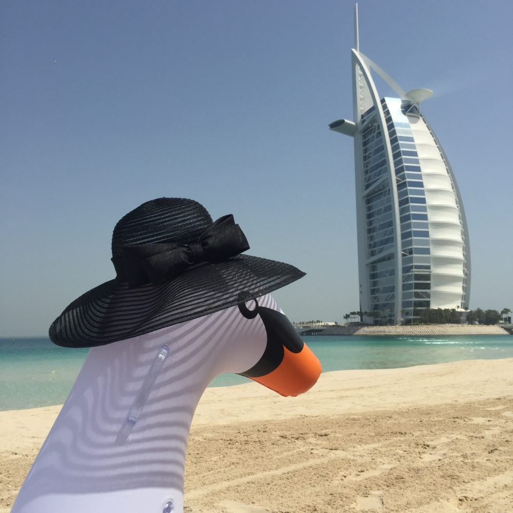 Swan with Accessorise Hat in front of Burj Al Arab